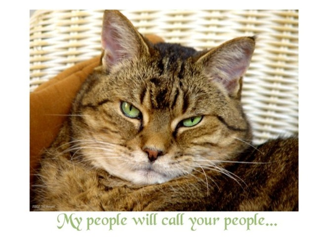 My people will call your people...